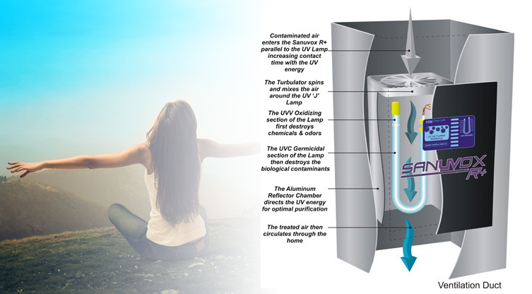 air purification systems ottawa